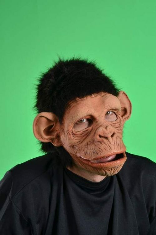 Mask Moving Mouth Monkey Monkey Cheetah Chimp Typhoo PG Tips Animal
